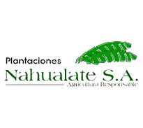 plantaciones nahualate
